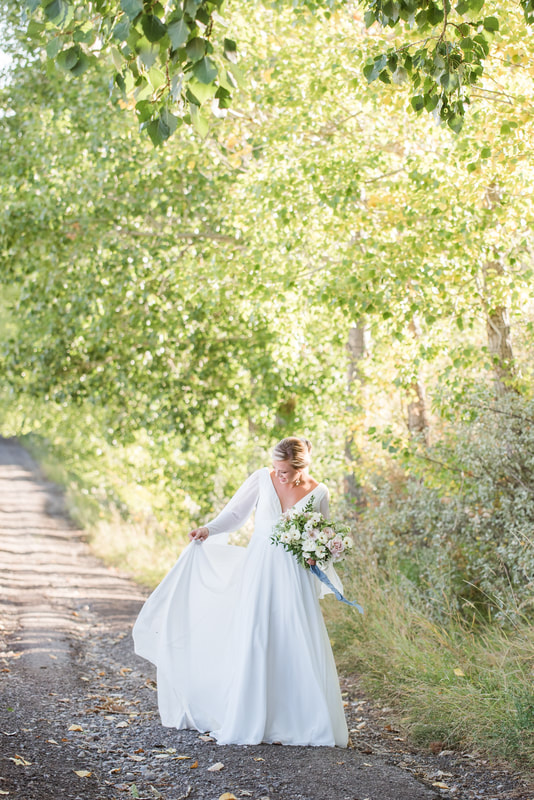 fine art portraiture gown on country road session